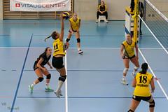 181014_VBTD1-Visp_182 (HESCphoto) Tags: vbtherwil volleyball damen saison1819 99ersporthalle nlb vbcvisp therwil
