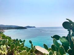 Sea (letkata) Tags: italia italy sardinia sardegna summer blue cactus mare sea