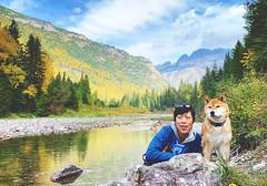 180926 Going-to-the-Sun Road (Fob) Tags: september 2018 glaciernationalpark montana mt travel trip roadtrip goingtothesunroad mango shiba shibainu dog pet 柴犬 me people