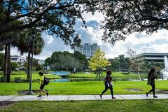 Campus Walk library (fiu) Tags: fiu university students walk mmc library campus miami florida international em