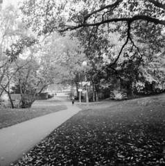 Hvitfeldtska (rotabaga) Tags: sverige sweden svartvitt göteborg gothenburg blackandwhite bw bwfp lomo lomography lubitel166 twinlens fomapan diy mediumformat mellanformat 120 6x6