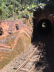 "Coromandel. Pottery wall on the Driving Creek Railway. (denisbin) Tags: coro angel ""eyeful tower"" ""driving creek railway"" pottery track railway switchback"