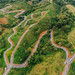 Road Development in Salvador Benedicto