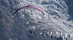 Flex Wing / Paragleiter (Fred from Switzerland) Tags: flexwing paragleiter chamonix em5