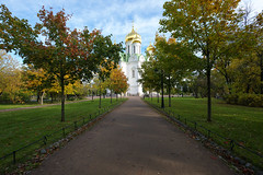 Autumn path to the cathedral. (fedoseenko) Tags: санктпетербург россия красота colour природа beauty blissful loveliness beautiful saintpetersburg sunny art shine dazzling light russia day green park peace garden blue white голубой небо лазурный color sky pretty sun пейзаж landscape clouds view heaven mood summer serene golden gold gate colours picture hall road tree grass nature alley history trees tsar stairway walkway field autumn outdoors old d800 wood cathedral church cupola holy orthodox path religion building foliage 1735mmf28d