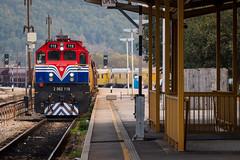 HZ 2062 119, Knin (josip_petrlic) Tags: hz hrvatske željeznice železnice željeznica zeljeznice železnica croatian railways railway railroad hž eisenbahn ferrovia zeleznice train zug diesel locomotive lokomotiva locomotora locomotiva lokomotive emd 2062
