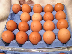 Dunnes Big Breakfast Eggs - Usable Eggs - €3.85 27102018 - 12-10-2018 (Lord Inquisitor) Tags: dunnes big breakfast eggs box €385 27102018 heneggs heneggs2018 dunneseggs2018 dunneseggs eggweights browneggs browneggs2018