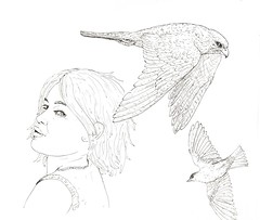 UnexpectedVisitor (Alex Hiam) Tags: falcon peregrine robin bird girl hunter pen ink drawing sketch illustration hiam