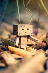 Parkour! (Ghinzo) Tags: danbo herbst autumn