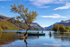 Llyn Padarn (gmorriswk) Tags: caernarfon wales unitedkingdom gb llyn padarn landscape reflection reflections tree llanberis snowdonia national park lake river water canoeing canoe