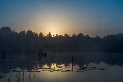 Solitude No. 2 (Marcin eM.) Tags: sonyalpha7 sonya7 ilce7 pentacon50mmf18 mist sunrise landscape solitude fisherman boat pond narew trees dark shadows shadow