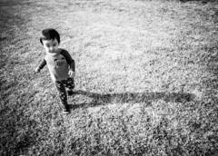Running to Dad - B/W (evenkolder) Tags: son toddler cern baby blackandwhite bw oneplus6 oneplus lightroom lightroomforandroid family
