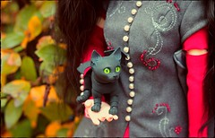 Golden Leaves (noir_saint_lilith) Tags: dolls dollphotography cat bjd impldoll artdoll walloyamorring autumn