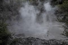 Rotorua Mud Pits (photoeclectia1) Tags: rotorua newzealand mudpits thermal volcanos seismic waikato geothermal