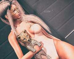 ◈№.587 - wildcats (αlιcα r. vαɴ нell) Tags: scandalize originals catwa maitreya phoenix hair hairfair2018 fair 2018 the arcade gacha events sl secondlife girl cat wildcats