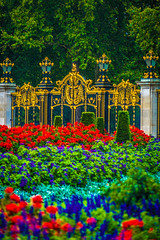 The flowers surrounding Buckingham Palace were beautiful.