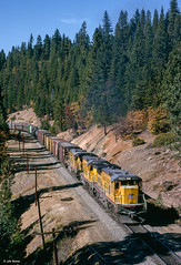 UP 9165 East at Massack, CA (thechief500) Tags: featherriverroute railroads up