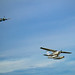 Spitfire and float plane