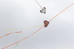 PiggottFunFly-20181013-0020 (Sam W. Hummelstein) Tags: airplanes controlled fly fun piggott rc