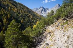 Val S-charl (Toni_V) Tags: m2409427 rangefinder digitalrangefinder messsucher leicam leica mp typ240 type240 28mm elmaritm12828asph hiking wanderung randonnée escursione valscharl trail wanderweg sentiero alps alpen ofenpassscuol engiadinabassa engadin unterengadin herbst autumn atun graubünden grisons grischun switzerland schweiz suisse svizzera svizra europe mountains ©toniv 2018 181013 pizmingèr
