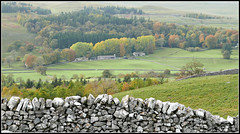 View Towards Chapel House (stephen dutch BDPS) Tags: wharfedale yorkshiredales fell hills scenery outdoor limestone trees