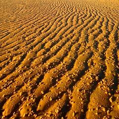 ///// (sculptorli) Tags: beach sunrise dawn sand australia brisbane abstract simplicity abstrait abstrakt alba minimalism queensland cottontree