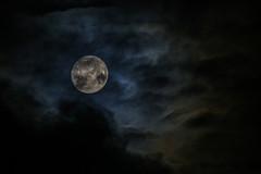 The moon through the clouds (Pétur Jónsson) Tags: tunglið máninn moon kópavogur peturj jónsson k55 reykjavík iceland