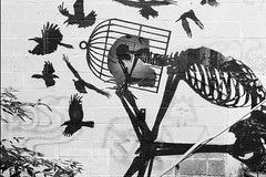 Relax your mind, let your thoughts be free ! (Alpha Rios) Tags: klaasvanderlinden sonys camera alpha rios sony lukejoyce 2018 urbanexploration belgium urbex ue donotresuscitate dnrurbex dnr roa skeletons skeletonfactory