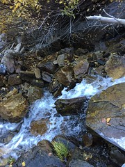 IMG_2553 (August Benjamin) Tags: provocanyon lostcreekfalls bridalveilfalls provorivertrail provoriver utah mountains hiking autumn fall fallcolors creek waterfall cascademountain