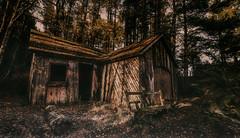 Woodland spirits (Impact Imagz) Tags: inverness lochfarr boathouse wood rural ruraldecay highlands highlandscenery mist autumn ghostly dark forest trees haunted derelict decay logs scotland canon irix blackstone 15mm