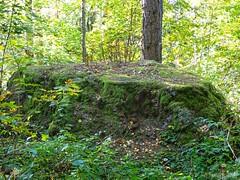 Uhrikivi - Sacrificial Stone (PeepeT) Tags: hartola uhrikivi sacrificialstone forrest metsä puu tree stone kivi kuppikivi cupstone