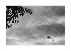 Poésie dans le ciel - Poetry in the sky (Panafloma) Tags: 2018 arras architecture architecturebatimentsmonuments artois bandw bw bâtiments cielmétéo détailsarchitecturaux famille géographie hautsdefrance nadine nadinebauduin natureetpaysages pasdecalais personnes techniquephoto végétaux arbre blackandwhite ciel hôtel lampadaire monochrome noiretblanc noiretblancfrance nuages photoderue province sky streetphoto streetphotography france fr