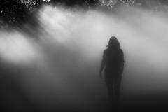 Turn Me Into Phantoms (dtman04) Tags: fog fogxruins boston light rays lightrays sun sunrays publicart emeraldnecklace fogxflo franklinpark sky mist
