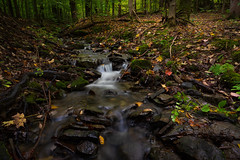 Little Waterfall in the Hammond Hill State Forest (John Brighenti) Tags: newyorkstate newyork upstatenewyork centralnewyork fingerlakes oudoors nature outside sony alpha autumn fall waterfall trees leaves longexposure water stream creek brook sel2f20 a7ii ilce7m2 sonyshooter