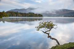Misty dawn, Derwentwater (John Gravett LPH) Tags: lph lakelandphotographicholidays johngravett lake lakedistrict dawn sunrise mist water landscape reflection