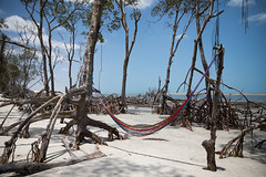 _Z2A0468 (Fabiosantos25) Tags: jeri jericoacoara ceara brasil brazil vacation férias canon canon5dmkiv ef2470mmf28ii
