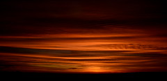 Barras da noite (Eduardo Amorim) Tags: pôrdosol poente entardecer poniente atardecer sunset tramonto sonnenuntergang coucherdesoleil crepúsculo anoitecer pelotas costadoce riograndedosul brésil brasil sudamérica südamerika suramérica américadosul southamerica amériquedusud americameridionale américadelsur americadelsud brazil eduardoamorim