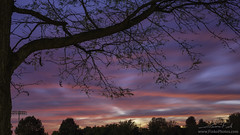 10-16-2018 Sportsfield Sunset (FinkoPhotos) Tags: sunsets pink eveningbluehour trees silhouettes red blue clouds weather october fall autumn lehighvalley dusk jasonfink