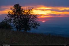 Večer (jirka.zapalka) Tags: autumn evening sunset trees clouds eveningclouds windy silouette czechrepublic landscape nature nikonz7 sigma7020028 colors