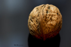 "walnut : ""Crinkled, Wrinkled, Folded or Creased"" (nicoheinrich86) Tags: reflection tabletop hmm macromondays macro walnut black crinkledwrinkledfoldedorcreased"