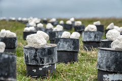 no idea (Mark Rigler -) Tags: drum tin stone rock grass