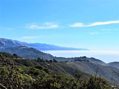 Andrew Molera State Park (PenangCA) Tags: andrewmolerastatepark california hiking trails bigsur ocean trees outdoor nature canon landscape mountain fall