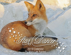Fox Calendar (marylee.agnew) Tags: vulpes fox red calendar 2019 cover art