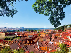 Panoramic View of Prague, Czech Republic (Ayarphotographer) Tags: age ancient architecture attraction baroque beautiful bohemia capital center charming city cityscape colorful cultural culture czech era europe famous fascinating gable glorious gorgeous gothic historic history houses landmark medieval middle old outdoors panorama panoramic prague renaissance republic romanesque roof scenic style summer tourism town travel typical urban view vivid world gabled roofs traditional folklore most antique outstanding special remarkable prominent dream destination trip visiting tourist wonderful outside gripping