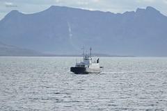 """""""Rosendal"""" (OlafHorsevik) Tags: rosendal torghattennord thn f ferge ferga ferry ferja ferje ofotfjorden vestfjorden tjeldsund"""