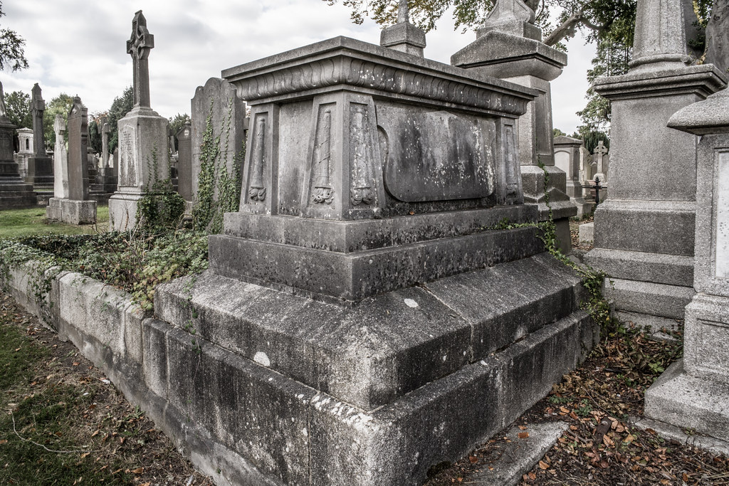 SEPTEMBER 2018 VISIT TO GLASNEVIN CEMETERY [ I USED A BATIS 25mm LENS AND I EXPERIMENTED WITH CAPTURE ONE]-144799