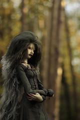 Twilight (Nymrah) Tags: bjd zaoll muse dollchateau doll chateau autumn