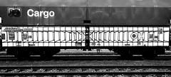 graffiti on Freights (wojofoto) Tags: amsterdam nederland netherland freighttraingraffiti freighttrain freights fr8 vrachttrein cargotrain graffiti streetart wojofoto wolfgangjosten zwartwit blackandwhite monochrome delta