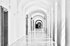 Eine Mädchengruppe bringt Leben ins Kloster - A group of girls is bringing life into a monastery (cammino5) Tags: kloster stflorian linz österreich juni 2018 borock highkey