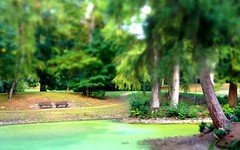 September Silence (farmspeedracer) Tags: september lake pond park green scenery bench autumn fall germany nature 2018